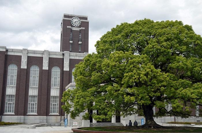マスク不要の京都大学宮沢孝幸准教授の評判・結婚・年齢は?